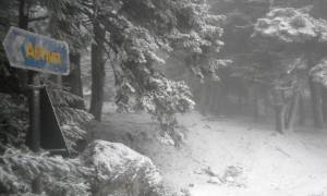 Καιρός: Θα χιονίσει σήμερα και στα ορεινά της Αττικής. Η ανάλυση του Τάσου Αρνιακού (video)