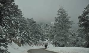 Καιρός: Ξεκίνησαν οι χιονοπτώσεις. Πώς θα εξελιχθεί η νέα κακοκαιρία μέχρι την Τρίτη...
