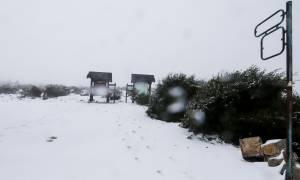 Καιρός ΤΩΡΑ: Πυκνή χιονόπτωση στην Πάρνηθα – Δείτε LIVE
