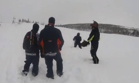 Εκαναν βόλτα στα χιόνια, όταν ξαφνικά άκουσαν κραυγές. Τι διαπίστωσαν; (video)