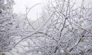 Καιρός: Πολλά χιόνια την Τρίτη, λιακάδα τα Χριστούγεννα. Η ανάλυση του Τάσου Αρνιακού (video)