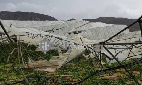 Κρήτη: Ανεμοστρόβιλος «ισοπέδωσε» θερμοκήπιο 10 στρεμμάτων στο Ελαφονήσι (pics)