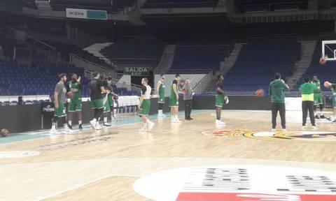 Παναθηναϊκός ΟΠΑΠ: Η «πράσινη» προπόνηση στη Μαδρίτη (videos&photos)