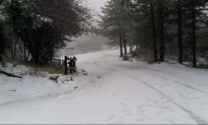 Καιρός: Ερχεται κρύο από τη δεύτερη μέρα των Χριστουγέννων. Η εκτίμηση του Τάσου Αρνιακού (video)